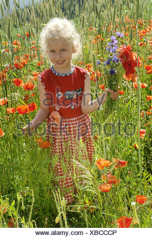 little girl in a field of poppies - Stock Photo