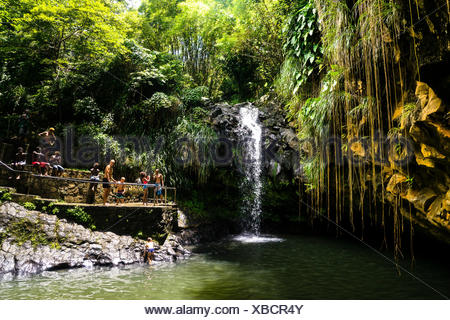 A group of persons in front of the Annandale Falls, Grenada, West Indies - Stock Photo