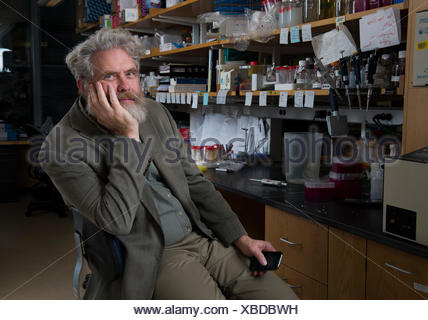Dr. George Church, initiator of The Human Genome Project, sits in his office at Harvard University. - Stock Photo