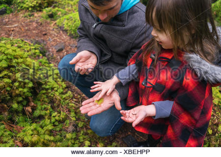 Young girl and father looking at fern leaf in forest - Stock Photo