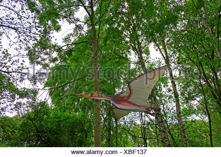 Pterodactylus (Pterodactylus), flying in a forest - Stock Photo