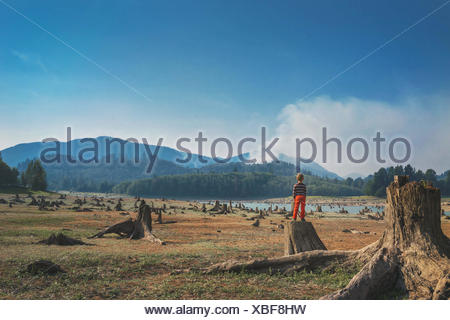 Rear view of a boy standing on a tree trunk in the countryside - Stock Photo