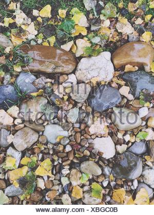 Directly Above View Of Wet Stones On Field - Stock Photo