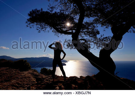 aleppo pine (Pinus halepensis), woman admires the view on the Mediterranean Sea in Calanques at Cassis, France, Provence, Bouches du Rhone, Calanques National Park - Stock Photo