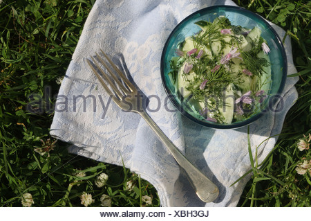 cnic Cucumber salad chive blossoms and mustard honey dressing Ingredients: large cucumber, tbsp chopped chives, ½ tbsp chopped - Stock Photo