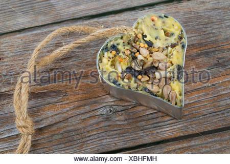 selbstgemachtes Vogelfutter wurde in ein herzfoermiges Foermchen zum Aufhaengen gefuellt | self made birdseeds are filled in hea - Stock Photo