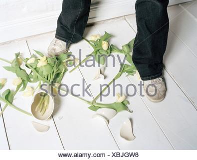 Broken Vase And Flowers On Floor Stock Photo 9567012 Alamy