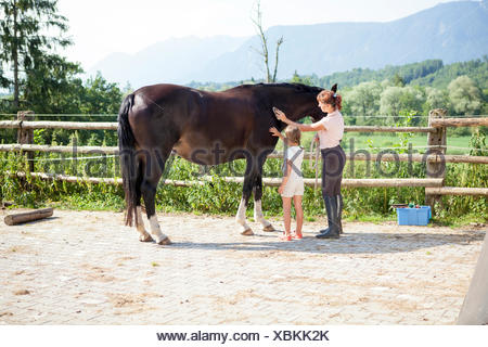 Woman and girl grooming horse outdoors - Stock Photo
