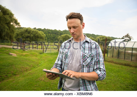 An organic farm in the Catskills. A man using a digital tablet in a grass paddock. - Stock Photo