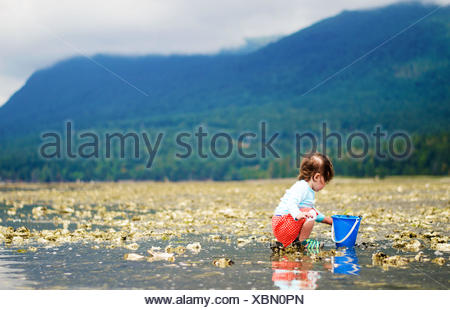 Girl (2-3 years) collecting things on beach - Stock Photo