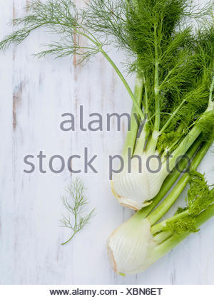 Fresh organic fennel bulbs for culinary purposes on wooden backg - Stock Photo