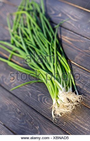 Close up of chives on wooden table - Stock Photo