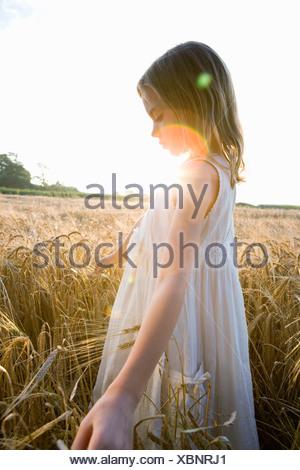 Girl walking in corn field, lens flare - Stock Photo