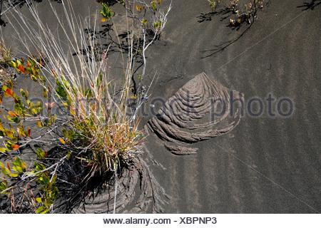 Pahoehoe Lava in the volcanic sand, Kau Desert Trail, Volcanoes National Park, Big Island, of Hawaii, USA - Stock Photo