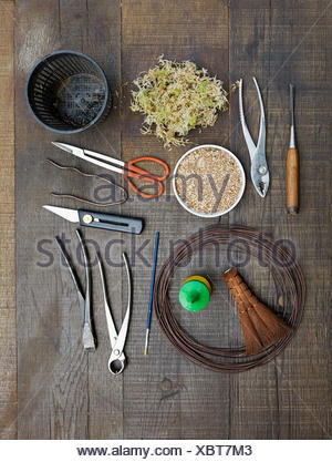 Bonsai tools, pliers, wire, Concave cutters, branch cutters, knife, pruning scissors - Stock Photo
