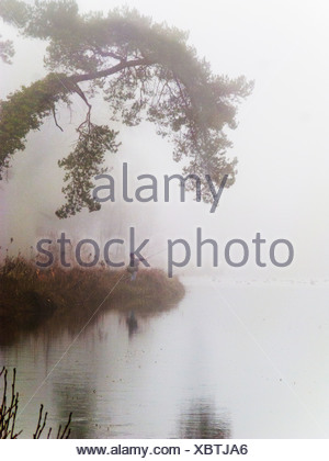 Person fishing on foggy riverbank - Stock Photo