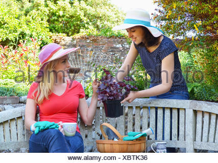 Young woman sitting on bench, friend showing plant - Stock Photo