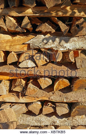 Europe, Germany, Europe, Rhineland-Palatinate, Erlenbach bei Dahn, castle, Berwartstein, wooden pile, detail, mood, still life, p - Stock Photo