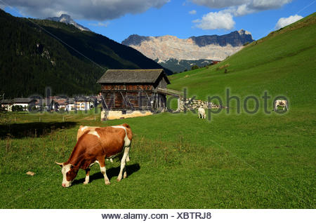 alps, dolomites, Italy, Europe, South Tyrol, - Stock Photo