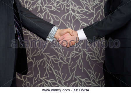 Two businessmen shaking each others hands - Stock Photo