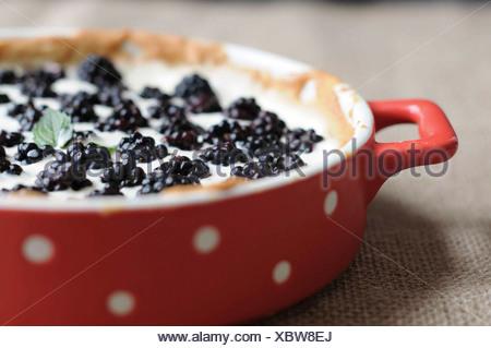 Blackberry tarte - Stock Photo