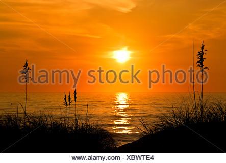 Sea oats sunrise, Outer Banks, North Carolina, USA - Stock Photo
