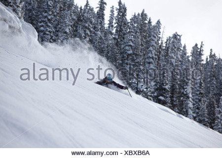 A athletic skier rips fresh deep powder turns in the backcountry on a stormy day in Colorado. - Stock Photo