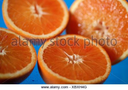 Blood Oranges Citrus spec Blutorangen Rautengewaechse Rutaceae innen Studio indoor - Stock Photo