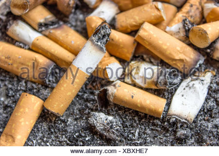 cigarette butts on a gray background - Stock Photo