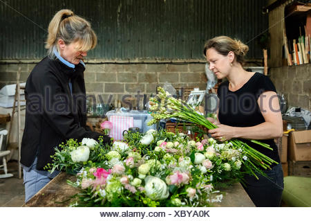 Commercial flower arranging. Two women at a workbench creating floral table decoration s and arrangements. - Stock Photo