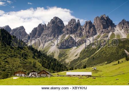 Kematen alp, Mount Kalkkoegel at back, Axams, Tyrol, Austria, Europe - Stock Photo
