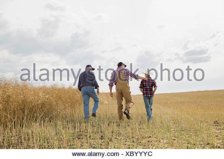 Multi-generation family walking in sunny wheat field - Stock Photo
