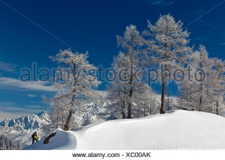 Man snowshoeing in the Berchtesgaden National Park, snowshoe tour, Watzmann Mountain at the rear, Berchtesgadener Land, Bavaria - Stock Photo