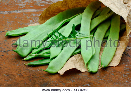 Beans and Summer Savory - Stock Photo