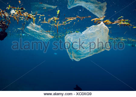 Plastic bags floating at the surface of the sea. Bunaken National Park, North Sulawesi, Indonesia. - Stock Photo