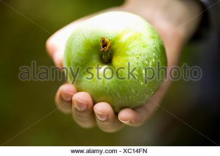 Hand holding fresh green apple - Stock Photo