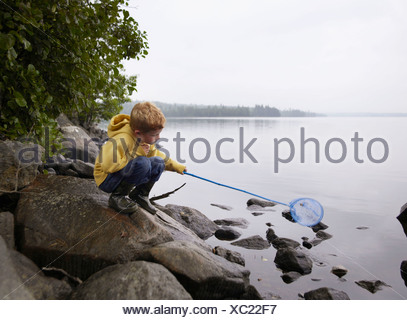 Young boy crouched on rocks fishing in a lake with a net. - Stock Photo