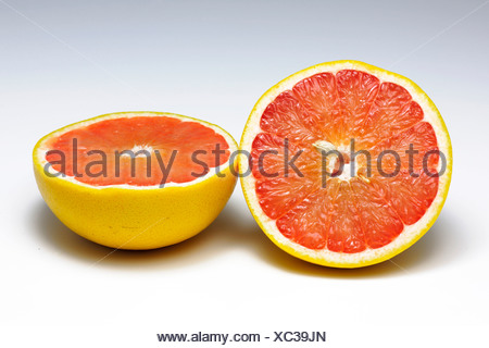 Red grapefruit (Citrus paradisi) cut into halves - Stock Photo