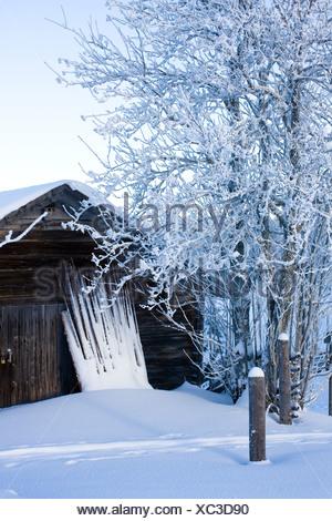 Hut in a wintry landscape, Sweden. - Stock Photo