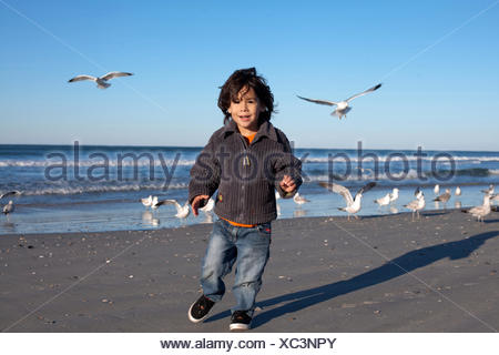 Young boys feed seagulls on the Beach in Wrightsville Beach NC. - Stock Photo