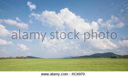 USA, New York State, Gabriels, Hay field in Northern Adirondacks - Stock Photo