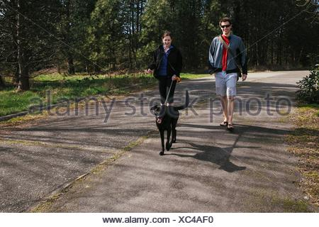 Couple walking a dog in sunlit park - Stock Photo