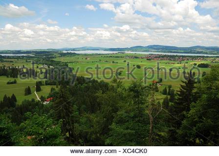 alps, bavaria, germany, german federal republic, idyllic, allgu, idyll, fresh - Stock Photo