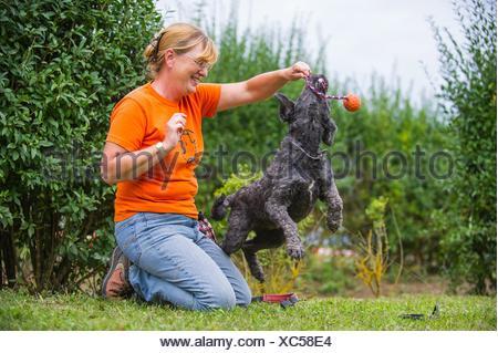 woman and Tibetan terrier - Stock Photo