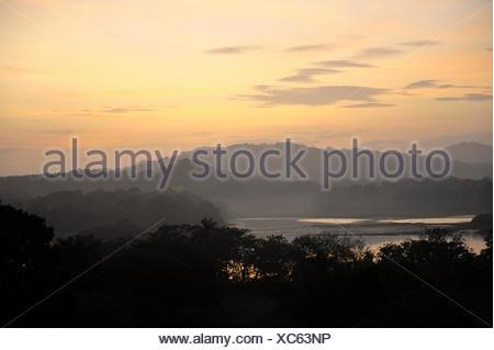 Sunrise View over Jungle Canopy & Gatun Lake Panama - Stock Photo