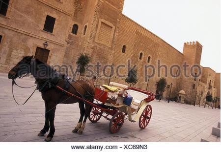 Eine Pferdekutsche mit Besuchern bei der Palca de la Reina in der Altstadt von Palma de Mallorca der Hauptstadt der Insel Mallorca einer der Balearen Inseln im Mittelmeer. - Stock Photo