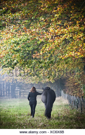 A woman walking with a horse in an autumn meadow England - Stock Photo