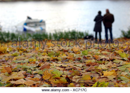 Muenster, Germany, Fall Aasee - Stock Photo
