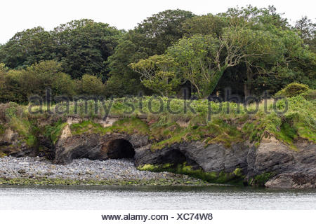 Uferlandschaft am Uebergang des Flusses Shannon ind den Atlantik, County Clare, Irland - Stock Photo