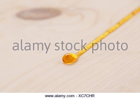 Sap oozing from the pinewood - Stock Photo